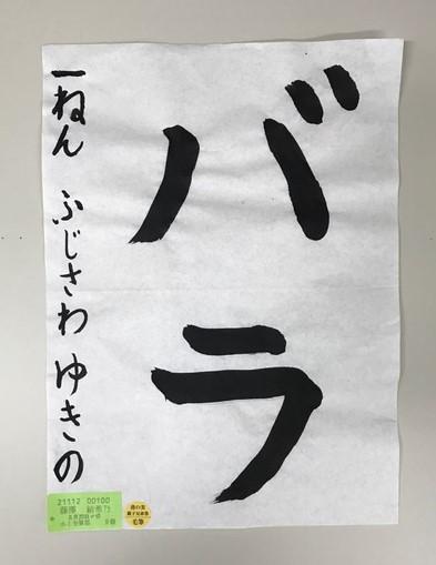 image23 (2)