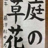 藤澤 結希乃